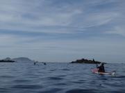 I Concentración Bueu en Kayak de mar 2014